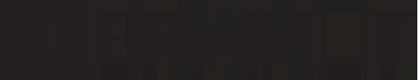 Logo - BrainLit AB